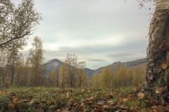 Fra Røstabekken mot Fruhøtta