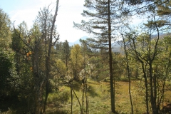 tomt_25-20140915_0190